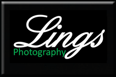 Link to Lings Photography